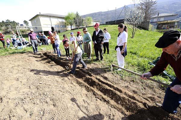 Photo of Comezan os traballos na horta do colexio de Vilamartín