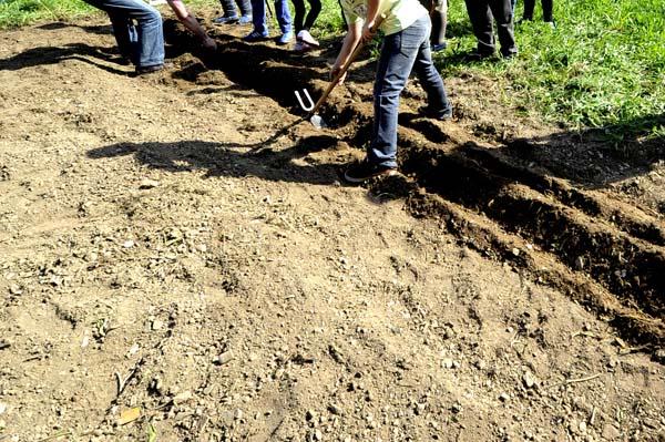 Photo of Agricultura ecolóxica para festexar o Día da Terra