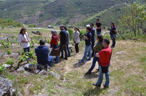 Visita ao proxecto Daterra Viticultores.