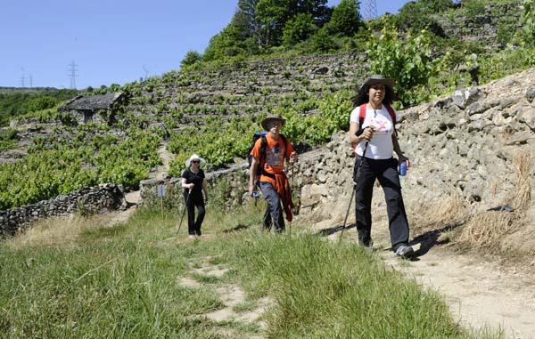 Photo of Un cento de camiñantes, na V Andaina de Manzaneda