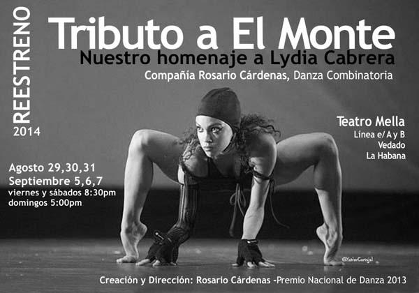 Cartaz deste espectáculo de danza na Habana./ Foto: Xavier Carvajal.