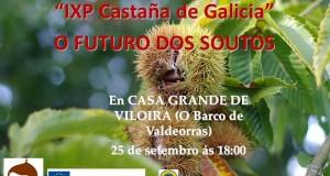 Xornada sobre a IXP Castaña de Galicia, no Barco