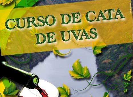Photo of Curso de cata de uvas, no Barco