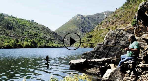 O pescador que alimenta ás aguias no río Bibei