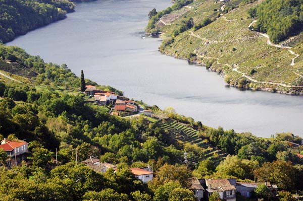 Photo of A Ribeira Sacra celebra o Día Europeo do Enoturismo