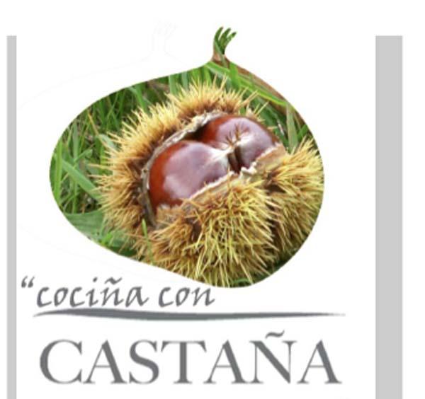 Photo of Final do V Concurso de Receitas con Castaña de Galicia