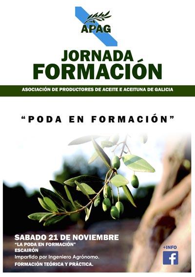 """Photo of Xornada """"Poda en formación"""" nas oliveiras en Escairón"""