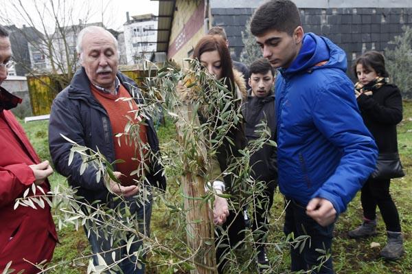 Photo of Visita de alumnos bercianos a plantacións de oliveiras valdeorresas