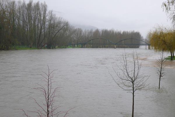 Photo of As fortes chuvias fan medrar o Sil