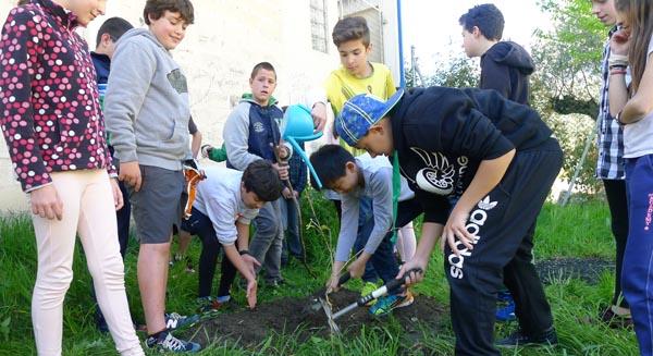 Photo of Día de plantación no CEIP Julio Gurriarán do Barco