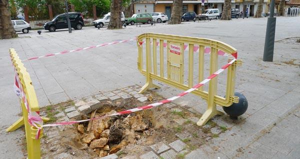 Photo of O Concello do Barco revisará o estado das árbores da praza de Viloira