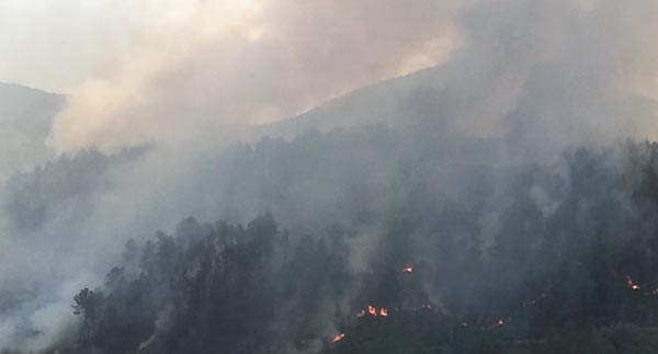 Photo of Evacuados 5 feridos do operativo de extinción no incendio de Ribas de Sil