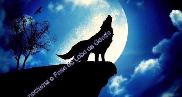 Photo of I Andaina nocturna ao Foxo do Lobo de Guende