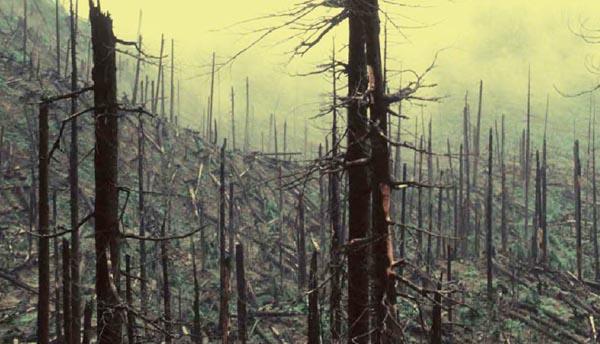Photo of Ourense convértese en foro internacional sobre os incendios forestais