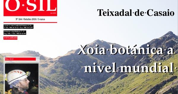 Photo of Un percorrido polo Teixadal de Casaio, no número de outubro de O Sil