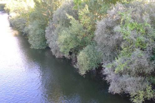 Photo of Ábrese o concurso para a actualización do Plan Hidrolóxico do Miño-Sil