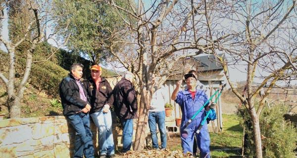 Photo of A asociación O Mosteiro de Vilanova organiza un curso de poda de árbores froiteiras