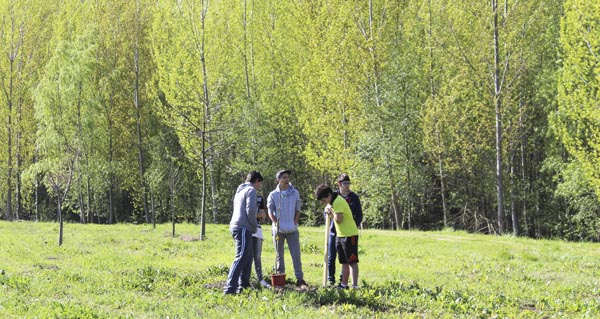 Photo of O Arboretum da Rúa vai collendo forma