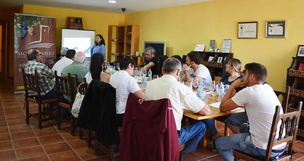 Photo of Curso de iniciación á cata de viños na D.O. Monterrei