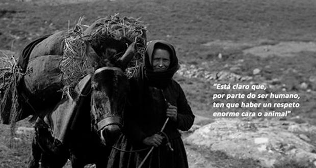 """Photo of """"Fronteiras de enerxía animal (I)"""", de Plácido Romero e Aser Álvarez, premiado nos Ánxeles"""