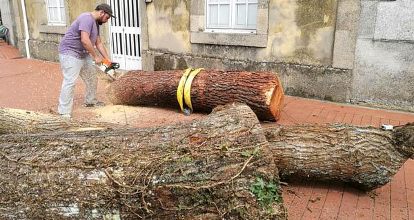 Photo of Concurso de talla en madeira con motoserra, en Sober