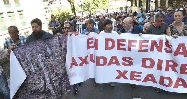 Photo of Os afectados polas xeadas reuniranse, finalmente, coa Conselleira a próxima semana