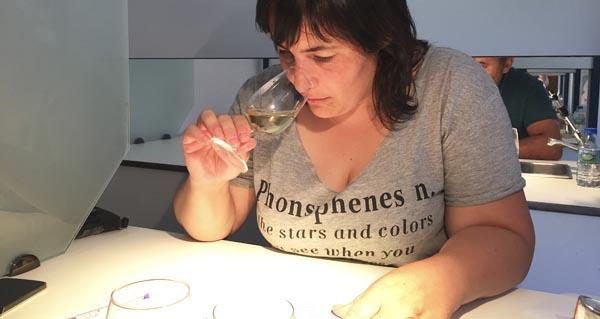 Photo of Os viños da XX Feira de Valdeorras, valorados polos expertos