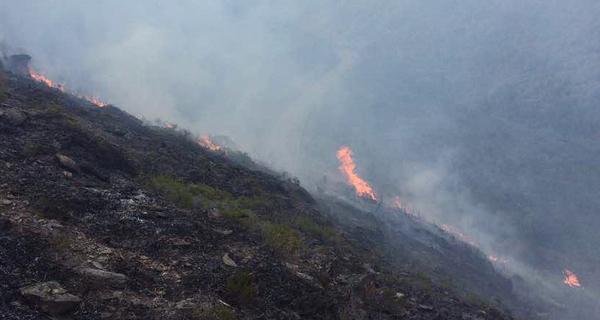 Photo of Extinguido o incendio de Sobrado (Trives)