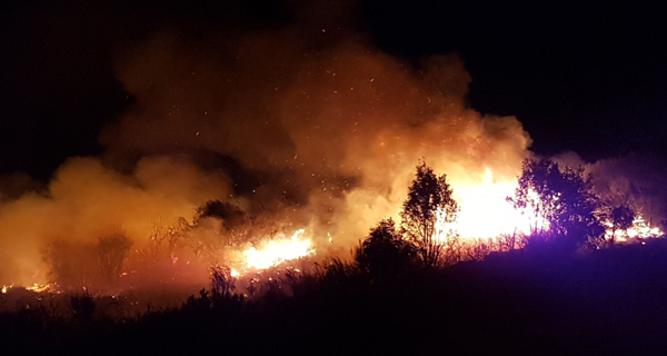 Photo of Controlado o incendio forestal en Cova (Trives)