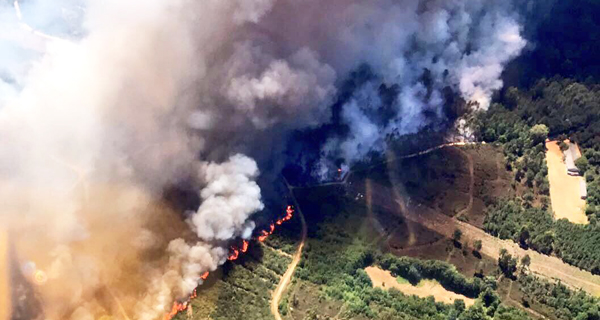 Photo of Extinguido o incendio forestal en Garabás (Maside)