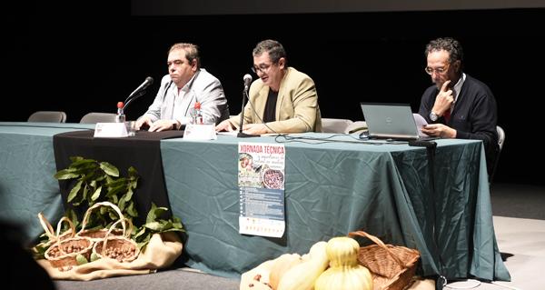 Photo of A problemática da praga da avespiña, nas xornadas sobre a castaña en Verín