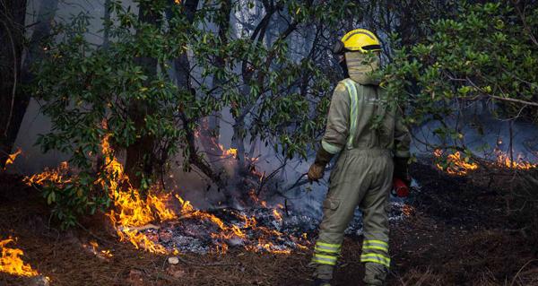 Photo of Incendio tamén en Valdegodos (Vilamartín)