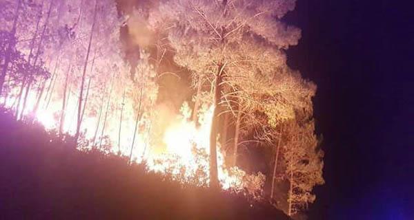 Photo of O lume entra no Parque Natural do Xurés