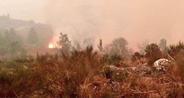 Photo of Ata oito lumes na provincia en situación de nivel 2 por proximidade a poboacións