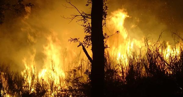 Photo of Dous incendios activos en Vilariño de Conso