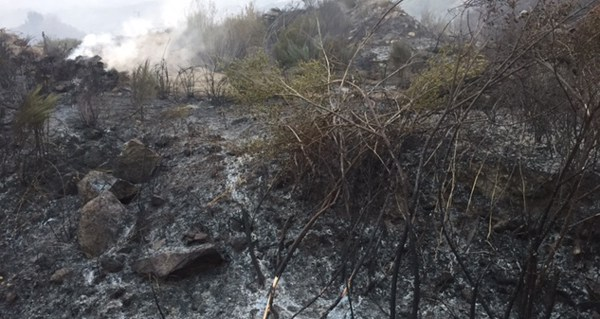 Photo of Controlado o incendio de Viana do Bolo