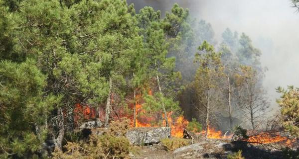 Photo of Vaga de lumes na provincia de Ourense