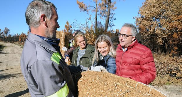 Photo of Un millón de euros para estabilizar o chan no Xurés e nos Ancares