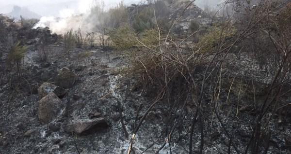 Photo of Ourense, a provincia galega máis afectada polos lumes con 22.623 has queimadas