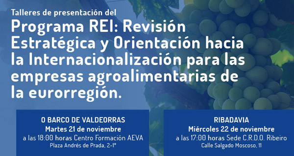 Photo of Presentación do programa de REI de internacionalización, no Barco o 21 de novembro