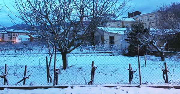 Photo of Amencida nevada na Rúa, Rubiá e O Bolo