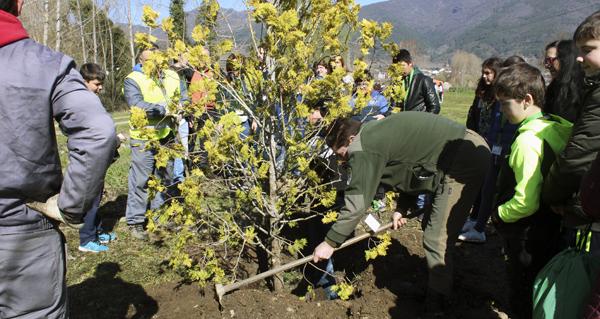 Photo of A Rúa dá a benvida á primavera cunha nova plantación no Día Mundial da Árbore