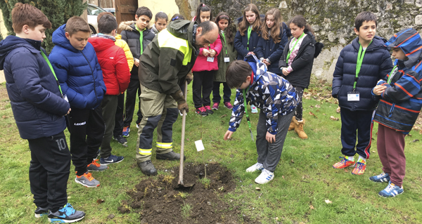 Photo of Charla e plantación para celebrar o Día da Árbore no CEIP Ramón Otero Pedrayo de Viloira
