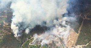 Incendio forestal en Cenlle