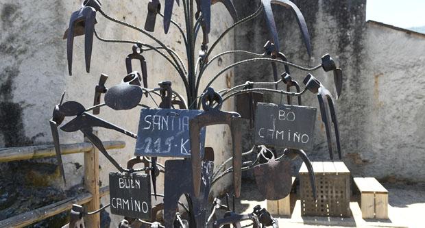 Photo of Unha peculiar árbore de aixadas, en Éntoma (O Barco de Valdeorras)