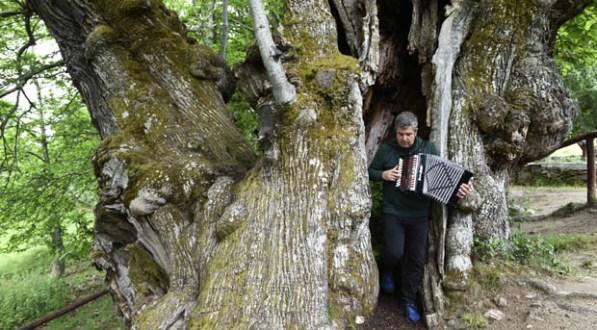 Photo of Kepa Junkera toca a trikitixa no interior do Castiñeiro de Pombariños (Manzaneda)