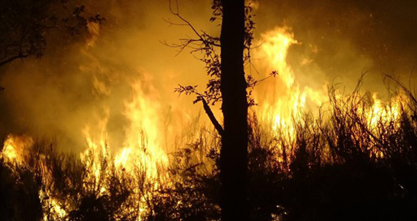 Photo of Charlas en Trives e no Barco sobre a nova normativa en materia de incendios forestais