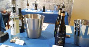 Media ducia de adegas valdeorresas, no túnel do viño para importadores americanos na CEO