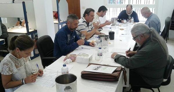 Photo of Cata de preselección de viños para as Distincións Gallaecia na D.O. Valdeorras
