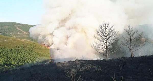 Photo of Continúan activos os incendios do Parque Natural do Invernadeiro
